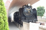 静態保存されているD51型蒸気機関車